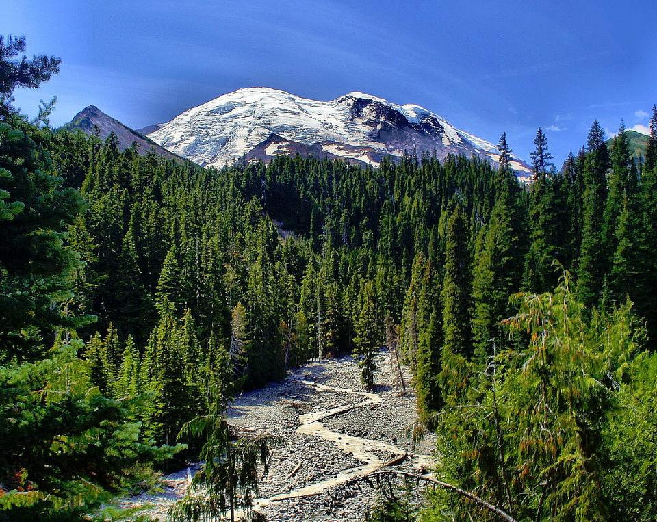 Mt. Rainier @ 4,392 m / 14,410ft